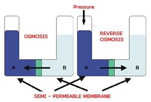 osmosis-method